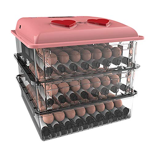 AQAWAS Incubadoras De Huevos, Incubadora Control de Temperatura y Hume