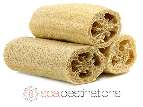 "Natural Loofah Exfoliating Bath Sponge by Spa Destinations (3 PACK of 6"" Loofah) Natural Renewable Resource."