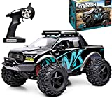 RC Cars 1:10 Scale 45+ kmh High Speed Large Remote Control Car 4x4 Off Road Monster Truck Electric 2.4GHz All Terrain Waterproof Boy Toys Truck Crawler Hobby Car for Kids and Adults Blue BG1525