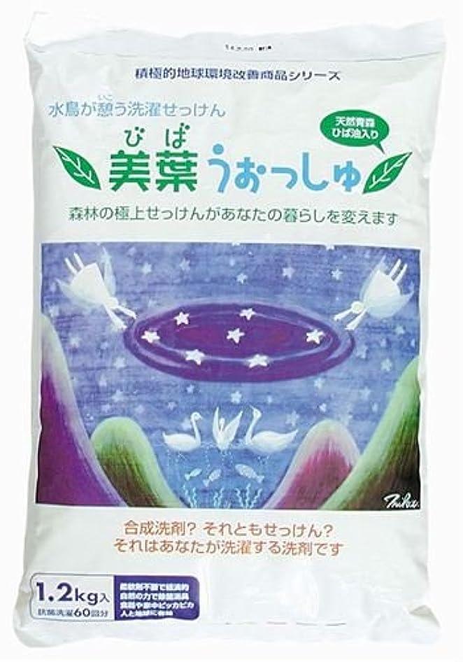 酸クリスチャン変成器美葉うぉっしゅ(粉せっけん) 1.2kg