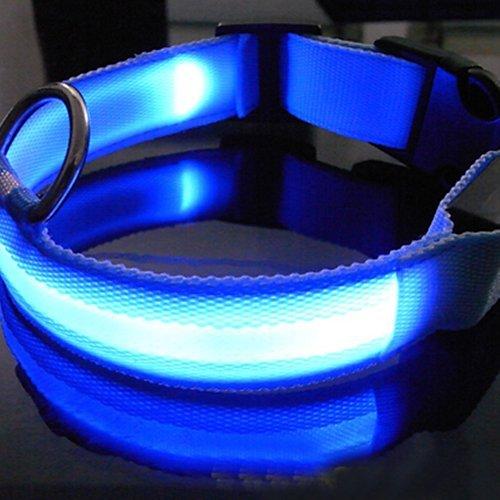 LED Dog Pet collare lampeggiante di sicurezza notte collare in nylon blu (S, blu)