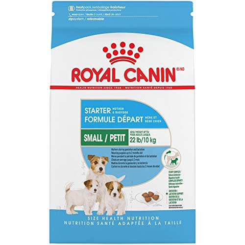 Royal Canin Size Health Nutrition Small Starter Mother And Babydog Dry Dog Food, 2 Lb