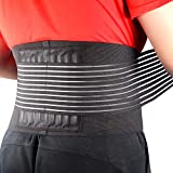 Cotill Back Brace Lumbar Lower Belt Brace and 8 Stable Splints Support...