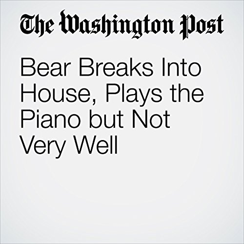 Bear Breaks Into House, Plays the Piano but Not Very Well audiobook cover art