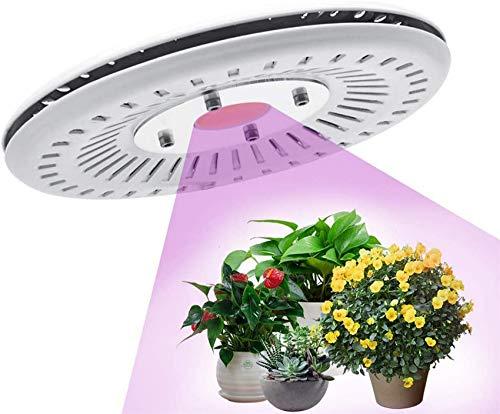 ZJDM Led Grow Light COB Full Spectrum 100W Impermeable IP67 Lámpara de Cultivo LED para Invernadero hidropónico Interior de Flores etable