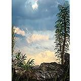 Fondos de fotografía Personalizados de Vinilo Prop Fairy taleFondo de fotografía A14 2.7x1.8m