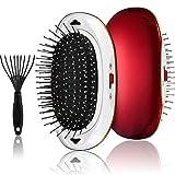 Portable Ionic Hair brush Detangler Brush set,Negative Ionic Vibrating Massage Scalp Hair...