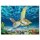 Meeresschildkröte Wandkunst Poster –