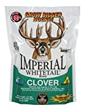 Whitetail Institute Imperial Clover Food Plot Seed (Spring and Fall Planting),...
