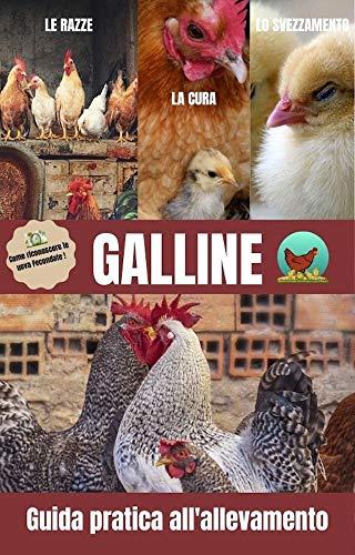 Galline: Guida pratica all'allevamento/ il pollaio/ l'incubatrice/ pulcini/ la chioccia/ uova fecondate/