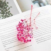 Cong-LL アロマワックスの花永遠の花カスミソウ花DIY材料1グラム/袋を維持しました (Color : 4)
