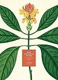José Celestino Mutis.: Una expedición botánica (Libros de Autor)