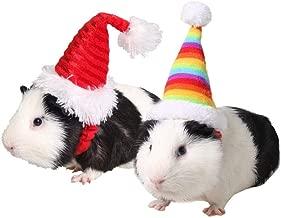 Best guinea pig hat Reviews