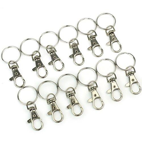 VORCOOL 12 Stück Karabinerhaken Edelstahl Schlüsselanhänger (Silber)