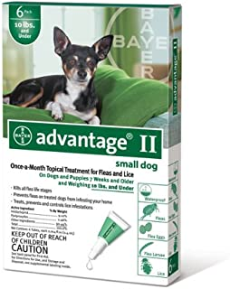 Best paradyne for dogs Reviews