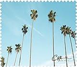 Panno in microfibra per la pulizia Palm Trees–Occhiali, Panno per Pulizia 15x 17,5cm panno per la pulizia di schermi, lenti ecc.