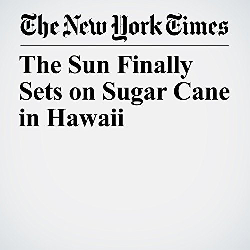 The Sun Finally Sets on Sugar Cane in Hawaii copertina