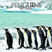 2021年壁掛けカレンダー ペンギンカレンダー 12 x 12インチ マンスリービュー 16か月 動物テーマ リマインダーステッカー180枚付き