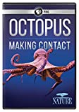 NATURE: Octopus: Making Contact DVD