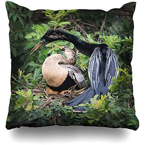 JONINOT Doble Cojines Fundas 18' Audubon Anhingas Aves nidificantes Naturaleza Rookery Buceo Apareamiento Snakebird Anhinga Funda de Almohada Suave para la Piel