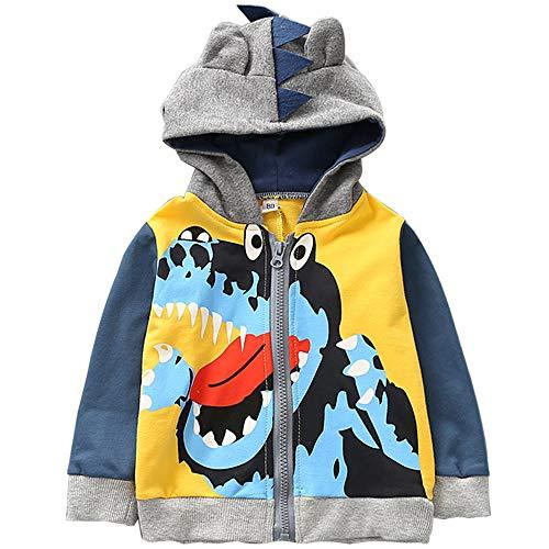 EULLA Kinder Jungen Langarm Dinosaurier Hoodies Kinder Sweatshirt Kleinkind Zip-up Jacke