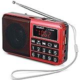 JXFS Prunus - Radio portátil SW/FM/AM/MP3/USB/SD/TF con Altavoz de neodimio, Gran tecla y Gran Pantalla, almacena...