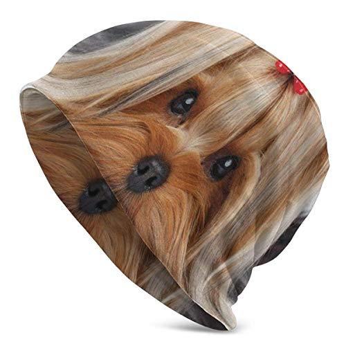 Valender Beanie Hombres Mujeres - Yorkshire Terrier acostado con Linda Cinta Yorkie Love Retrato de un Perro - Gorra Unisex con puños Lisos de Punto de Calavera