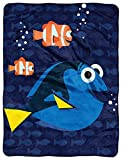 Kids Warehouse Finding Dory, Micro Raschel Throw -46' by 60'