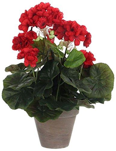 MICA Decorations 975161Flores, Geranium Grandes, Color Rojo