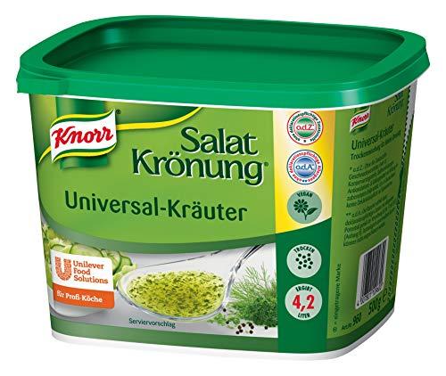 Knorr Salatkrönung Universal Kräuter (Salatdressing einfach zuzubereiten, für flexibel einsetzbares Dressing) 1er Pack (1 x 0,5 kg)