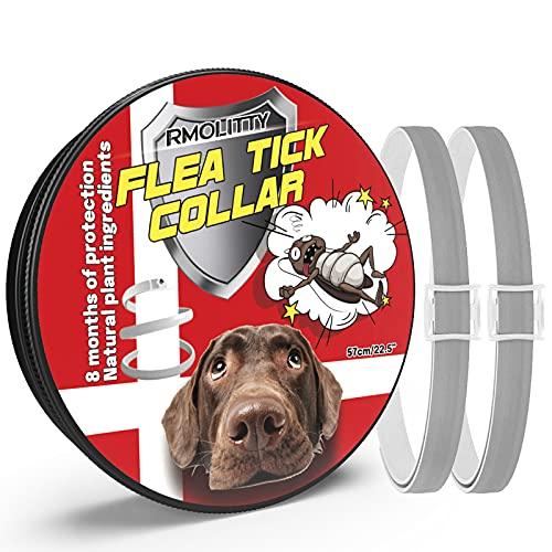 Rmolitty Collar Antiparasitario Perros Collar para garrapatas, 8 Meses de Protección para Pequeña Medio Grande Perros (Gris)… (2 Pack)