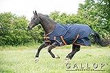 Gallop Trojan 100g Chemise de pluie avec col Standard EU 115cm
