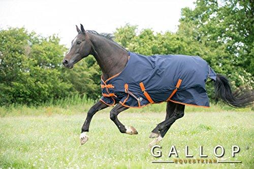 Gallop Pferde-Outdoordecke 100g Kein Hals, EU 135cm
