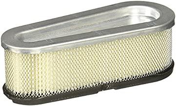 Briggs & Stratton 691667 Oval Air Filter Cartridge,White