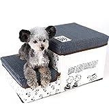 犬用 階段《折り畳み可能 収納付き》スヌーピー フレンズ柄 ペット用 ステップ 2段 ペットパラダイス 収納 ステップ 階段 2段 小型犬 シニア犬 618-59233
