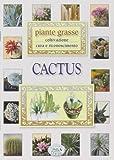 Cactus. Piante grasse...