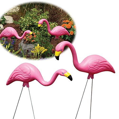 16 best plastic yard flamingo for 2020