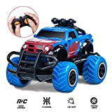 Ltteaoy Remote Control Car Toys, 1:43 Scale 2.4G Remote Control Racing Car
