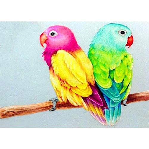 Diopn 5D diamant schilderij DIY vogel landschap papegaai volle boor plant diamant kunst foto kruissteek kits kunst wanddecoratie 30*40