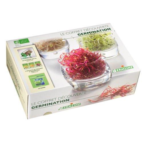 Germline - Coffret cadeau - Germoir en verre + 3 sachets de graines + 1 livre
