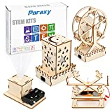 4 in 1 STEM Kit, Wooden Construction Science Projects, Assembly Mechanical Models , 3D Building Blocks DIY Ferris Wheel, Carousel Model, Nightlight Lantern Educational Toys for Boys and Girls