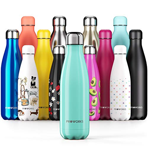 Proworks Performance Stainless SteelSports Water Bottle |Double Insulated Vacuum Flask for 12...