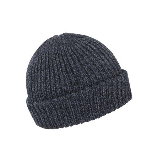 Result - Bonnet tricoté Whistler - Adulte unisexe (Taille unique) (Gris)