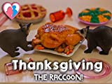Thanksgiving (The Raccoon!)