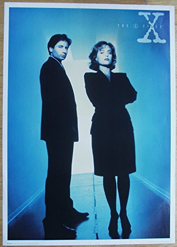 THE X-FILES Akte X Poster Nr. 2 Format 64 x 90 cm