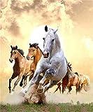 ZAWAGU Pintura Diamante DIY 5D Punto de cruz Prensa digital set artes y manualidades Adecuado para correr caballos para decoración de pared para adultos Diamante cuadrado