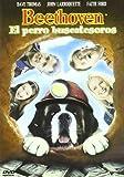 Beethoven 5. El perro buscatesoros [DVD]