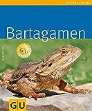 Bartagamen (GU TierRatgeber) - Manfred Au