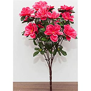 Baisheng Artificial Flowers Rhododendron simsii Planch Silk Flower Party Festival Xmas Bouquets Home Wedding Decoration(4 Bunch-Rose Red)