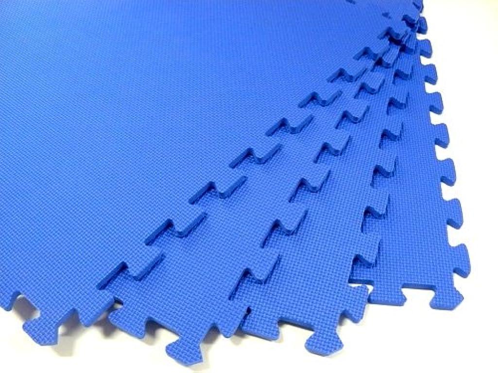 240 Square Feet ( 60 tiles + borders) 'We Sell Mats' Blue 2' x 2' x 3/8